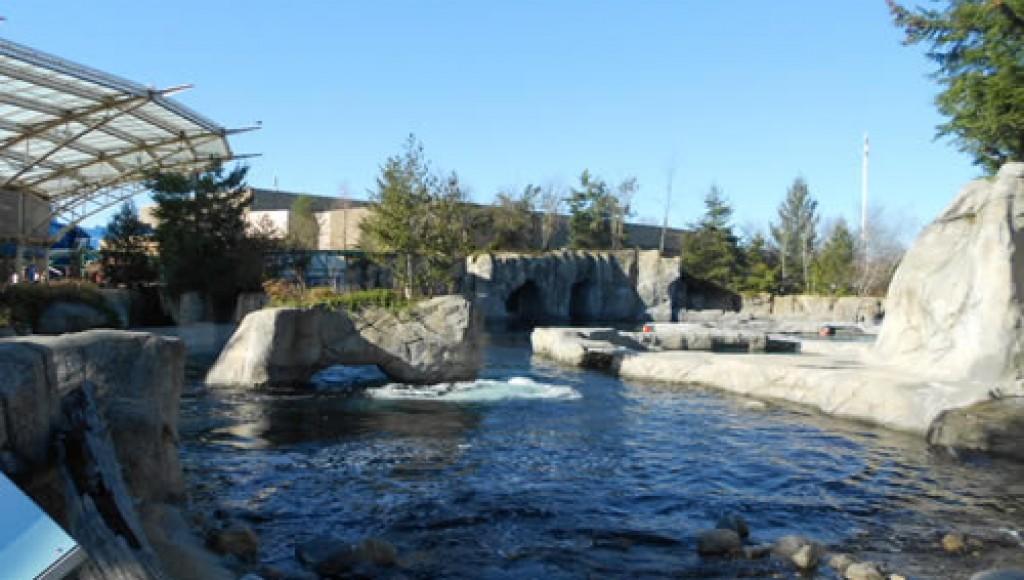 Mystic Aquarium This Is Mystic Ct