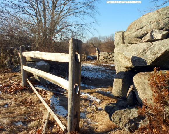Wood Gate and Brick Wall at Coogan