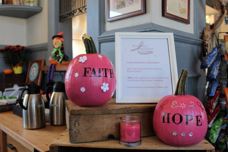 pink pumpkins - Mystic Depot Roasters
