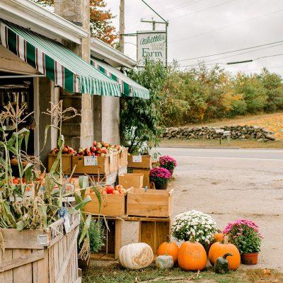 Whittle's Farm Fall