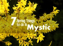 7 Spring Things To Do In Mystic