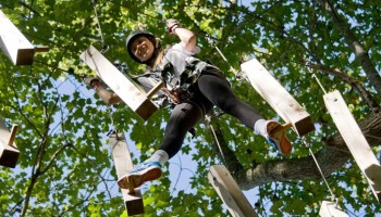 Aerial Adventure Park at Fields of Fire